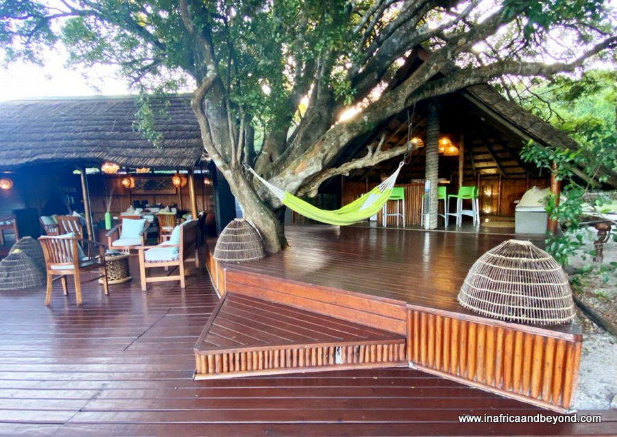 Replying to @InAfricaNBeyond: My latest post - Kosi Forest Lodge in Kosi Bay - a South African treasure   #shotleft #sharesouth #kznhasitall #tbt #thursdayvibes #WeStart2021Stronger #travelchatsa #trlt #ttot #armchairtravel