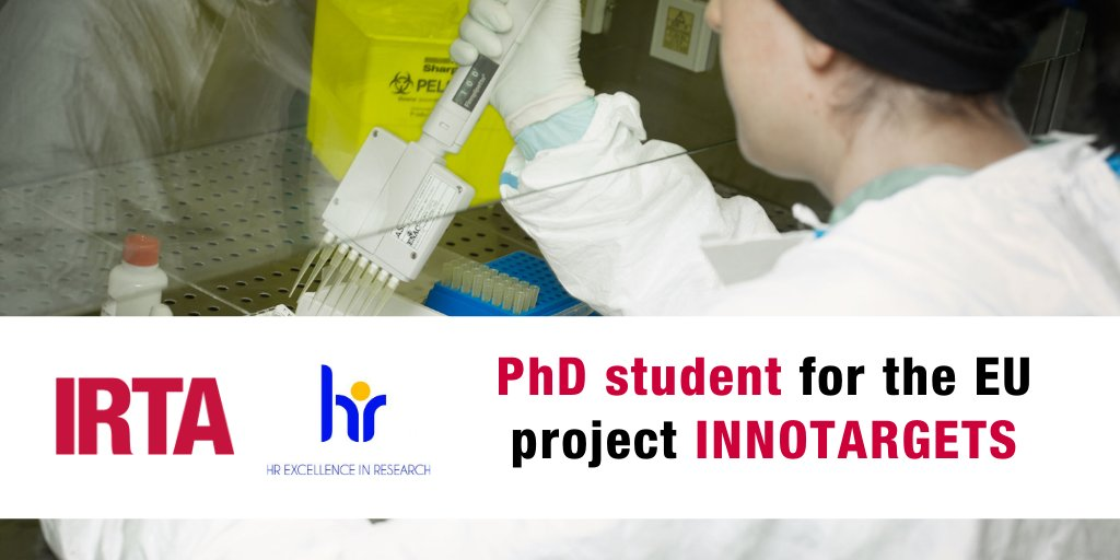 We're looking for a PhD student for the european project #INNOTARGETS  ⏳ Deadline for applications: January 25th, 2021 🗺️ At IRTA-@CReSA_r (UAB campus, #Barcelona) ☑️   #AnimalHealth #ScienceJobs #microbiology #biochemistry #biotechnology