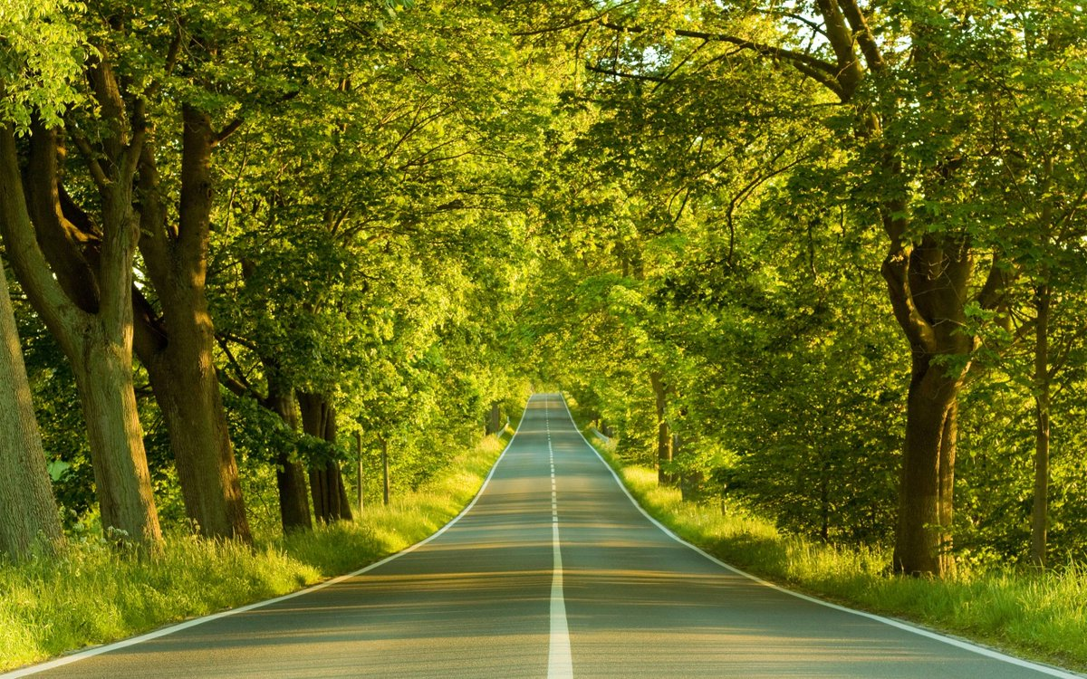 At the end of the road, maybe the end of the nightmare! #photos #photography #landscape #road #greentrees #KatanaHugo