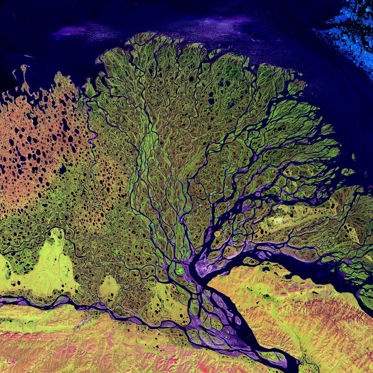 LAST CHANCE TO BOOK our CPD teaching you how to use earth observation data for teaching urbanisation, biodiversity, hazards. Our 27 January online CPD includes a practical introduction to Landsat Explorer. Tickets only £35/45
