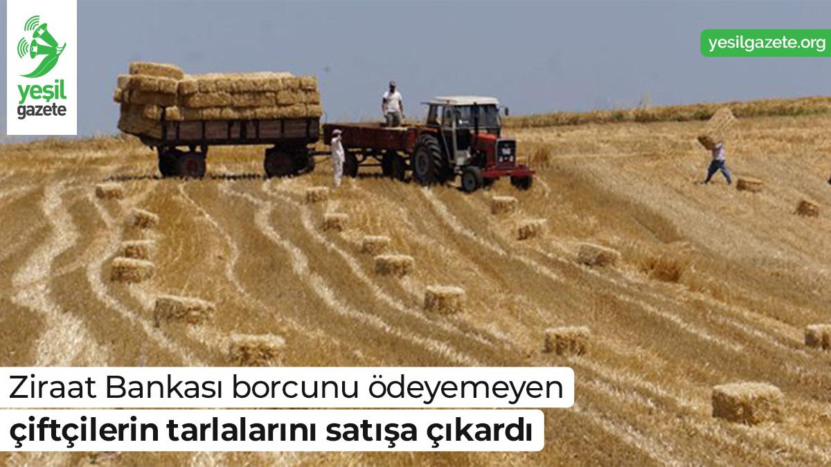 Türkiye'de tarım ve hayvancılığı desteklemek için kurulanZiraat Bankası'nın internet sitesinde, borcunu ödeyemeyen çiftçilerin el konulan tarla ve bağ bahçeleri satılmaya başlandı.  Ayrıntılar: https://t.co/3klH9UK5lr  #yeşilgazete #tarım #gıda #ziraatbankası https://t.co/n1ve7lPbTa