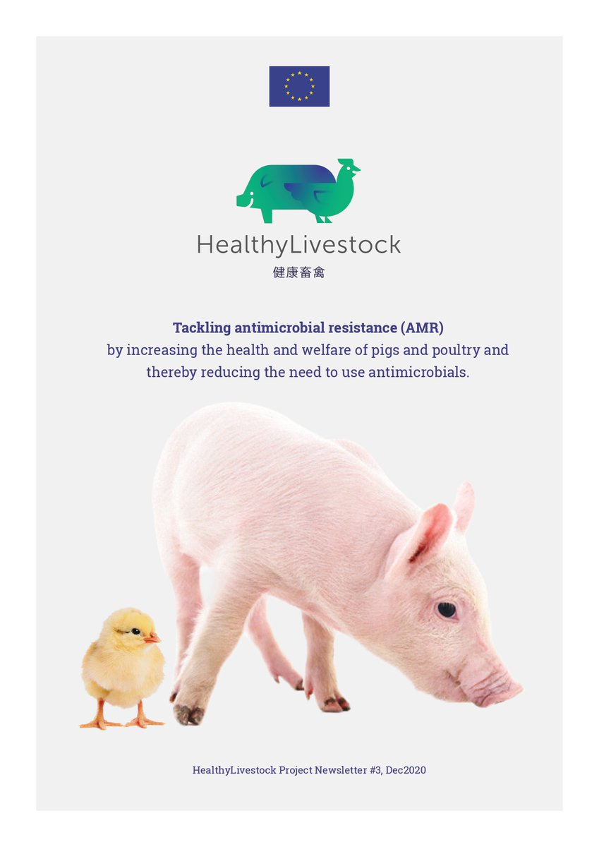 Have a look at the 3rd HealthyLivestock project newsletter!  Interesting articles, News from the project, Interviews with project participants and more! #AMR #animalwelfare #animalHealth