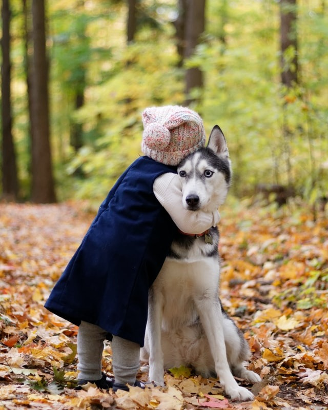 Did you know....receiving a hug helps reduce stress, lowers blood pressure and lowers the risk of heart disease. It also eases anxiety. #GiveAHug #TheMoreYouKnow #NationalHuggingDay