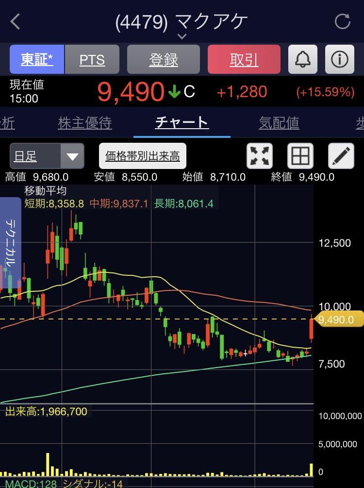 ワン 株価 フィード