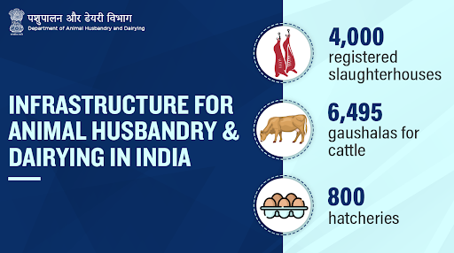 .@Dept_of_AHD supplements state governments efforts to preserve & protect India's livestock by providing healthcare services & better infrastructure!   #Unite2FightCorona #AnimalWealth #Livestock #AnimalHealth #NewIndia