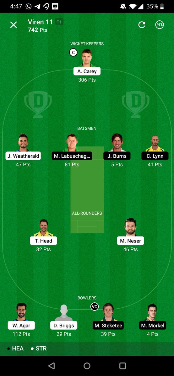 ALEXX CAREYY, 🔥🔥 Siddle spoilt my One SL 🙄 CS in 11 members and TOP 9 MINI GL ❤️❤️ Congrats to all ❤️ #Dream11 #BBL10 #SyedMushtaqAliT20