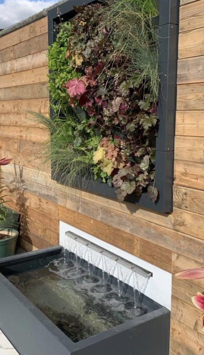 Plants and water, what better combination? #wonderwall #plantwall #livingwall #greenwall #ecofriendly #reducecarbonfootprint #biophilicdesign #biophilia #plantsofinstagram #plantwall #plantsandwater