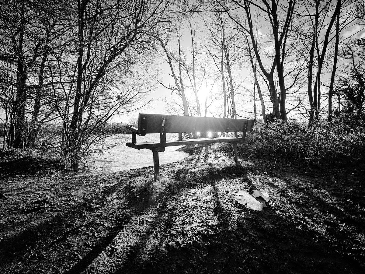 This morning's walk in black and white.  #morning #blackandwhite #thursdaymorning #NaturePhotography #photooftheday