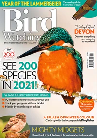 Need some help identifying #birds for the #BigGardenBirdWatch then @SurreyLibraries can help? You can borrow @BirdWatchingMag from @RBdigitalUK or borrow a guide from open libraries.  #LibrariesFromHome @Natures_Voice  #SaturdayMorning