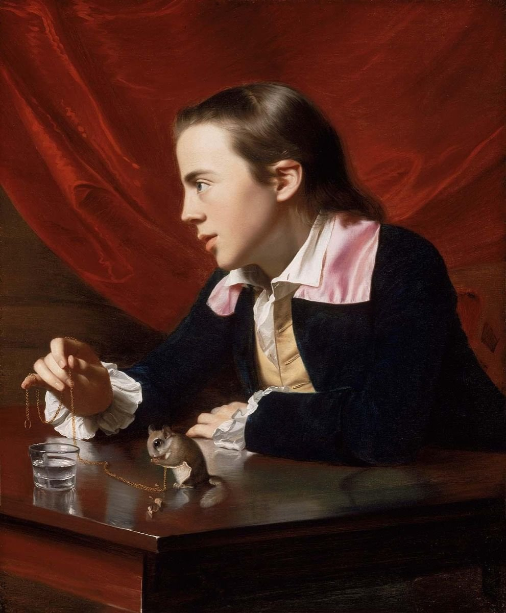 Everybody in the 18th c. British American colonies seems to have had a pet squirrel. Henry Pelham with his Flying Squirrel, 1765, by John Singleton Copley (@mfaboston) #SquirrelAppreciationDay