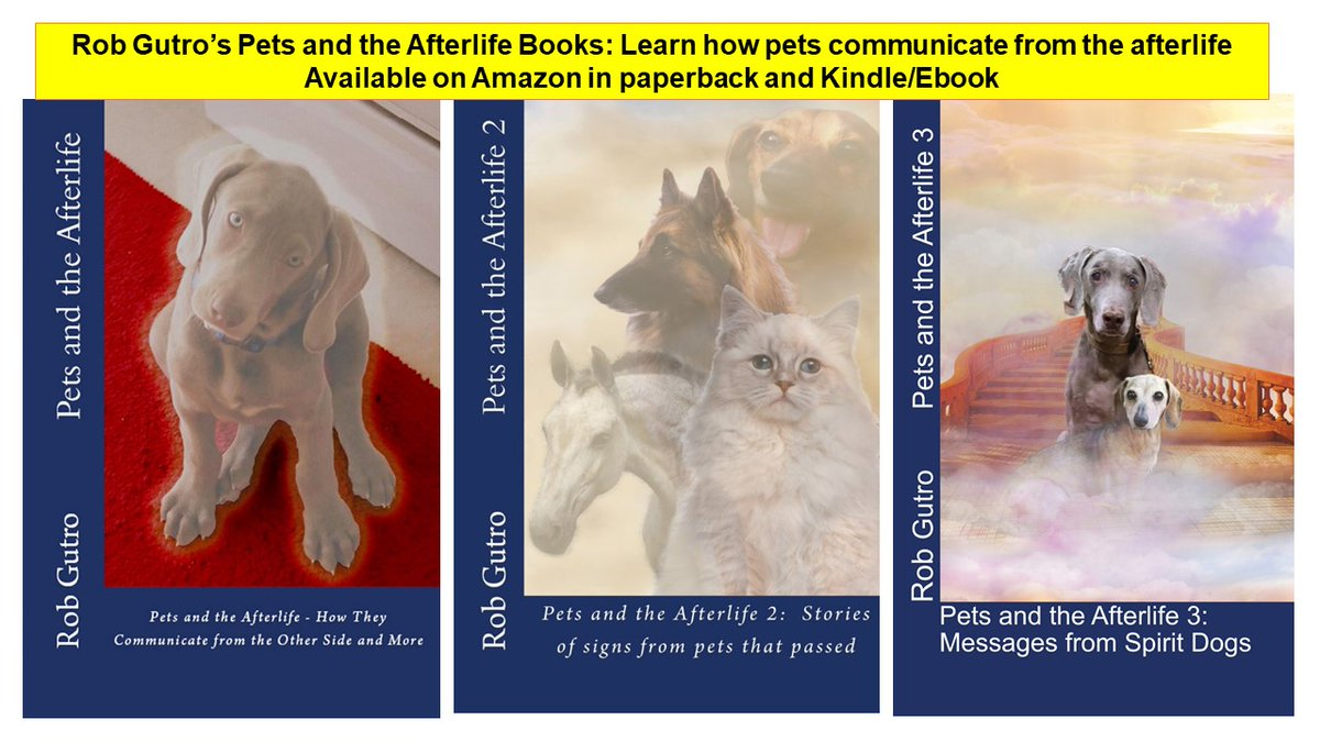What's the Difference between #pets and the #AfterLife 1, 2 and 3?   Here are the summaries for you!  READ ON>>