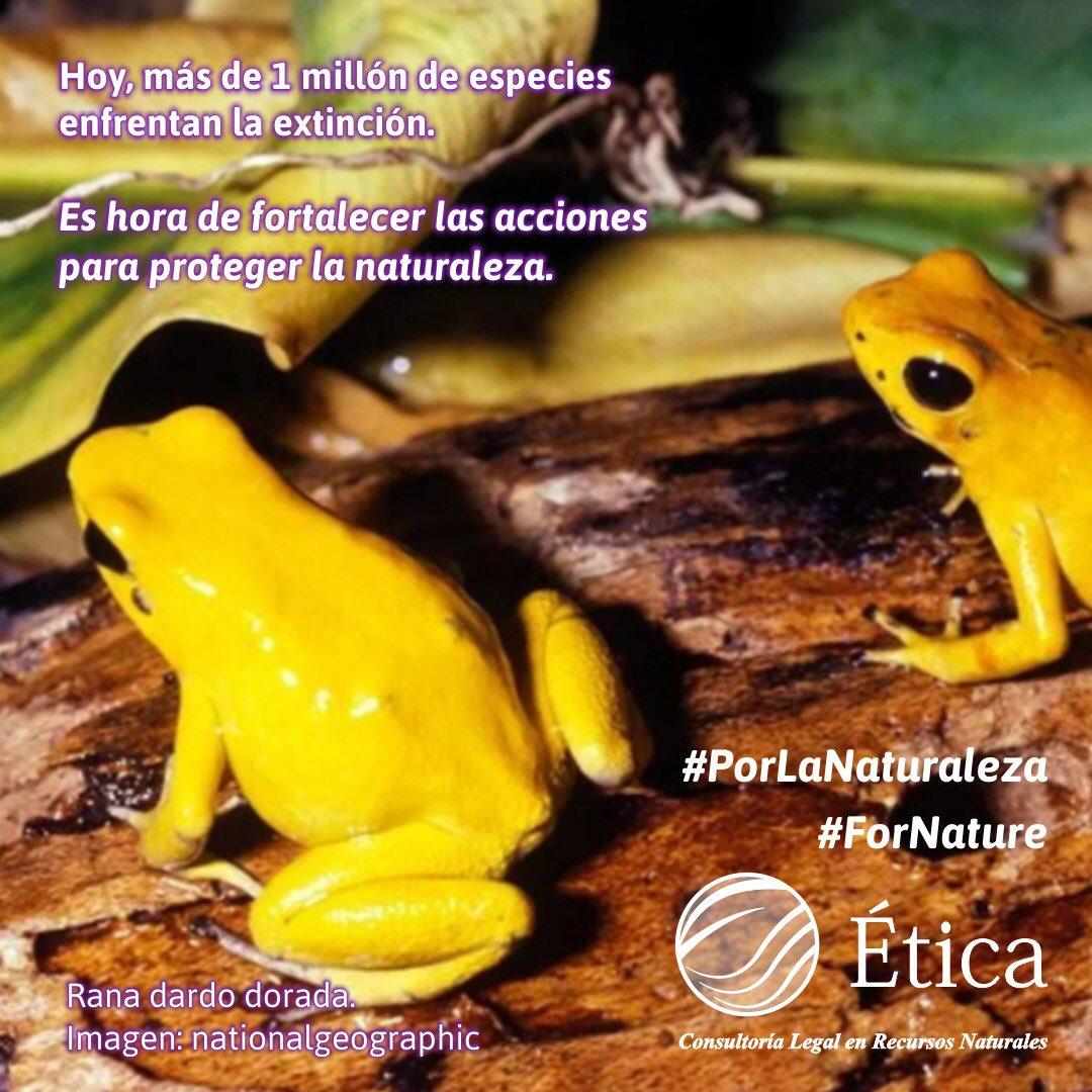 #PorLaNaturaleza #ForNature