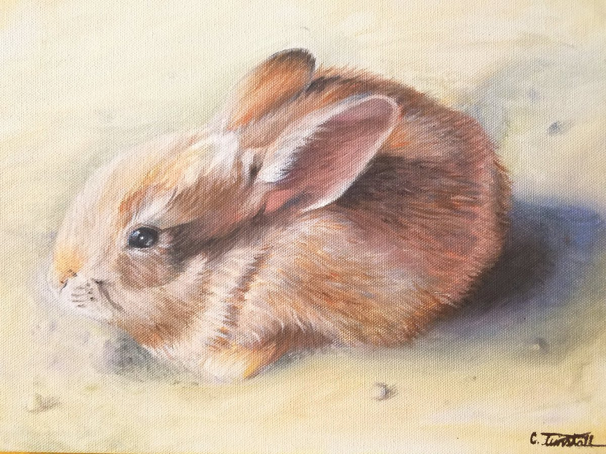 Not to flex but this was my first oil painting ever made and it's honestly really good  #art #oilpainting #nature #ArtistOnTwitter #oiloncanvas #bunny #rabbits #natureartwork