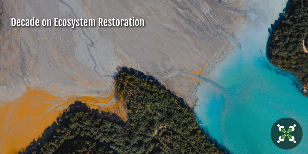 With the dawn of 2021, the Decade on Ecosystem Restoration has started! 🌳 Ecosystems are key for life on Earth, so taking care of them is taking care of the planet - and ourselves! 🌍 Let's join forces to protect ecosystems! #GenerationRestoration