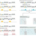 Image for the Tweet beginning: Chromatin accessibility profiling methods
