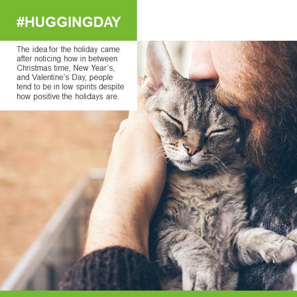 Don't forget to cuddle your #cat or #kitten, it's #NationalHuggingDay  #HuggingDay #CuddleDay #CuddleYourCat #CuddleYourPets #catstagram #catsofinstagram #ThursdayMood #ThursdayMotivation #ThursdayVibes #ThursdayAfternoon #catoftheday #catlovers #catslife #ThursdayThoughts