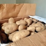 Image for the Tweet beginning: Potatoes just arrived from @jonlyoder.