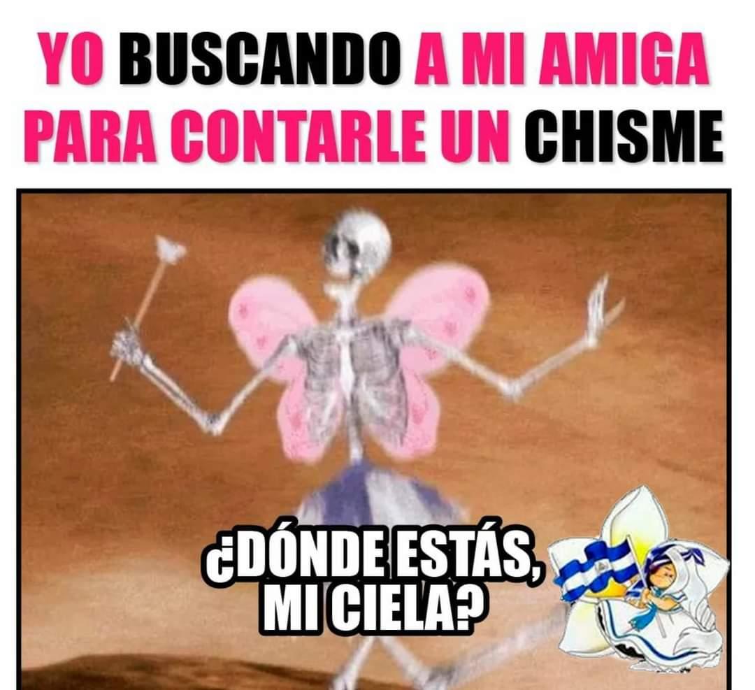 #21Enero| Donde están mis cielas? 🤣😂  #humor #AmorANicaragua #friends