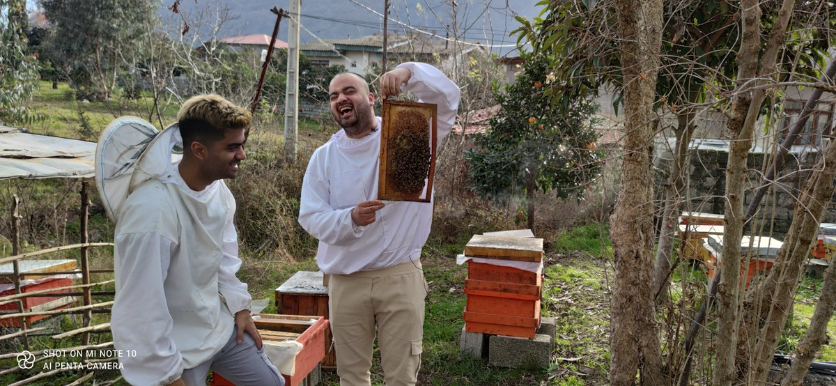 1:what are you doing? 2: I'm #happy and #laughing 1:Why? 2:Because #God is with me 1:Are you crazy? 2:No, we only have fewer, otherwise you will be #crazy #beekeeper #beekeeping #honeybee #زنبورداری
