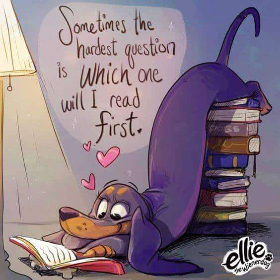 Trying to decide which book to read first will always be the hardest decision you'll ever have to make! #thursdaymorning #lovepets #bookscafe #reading