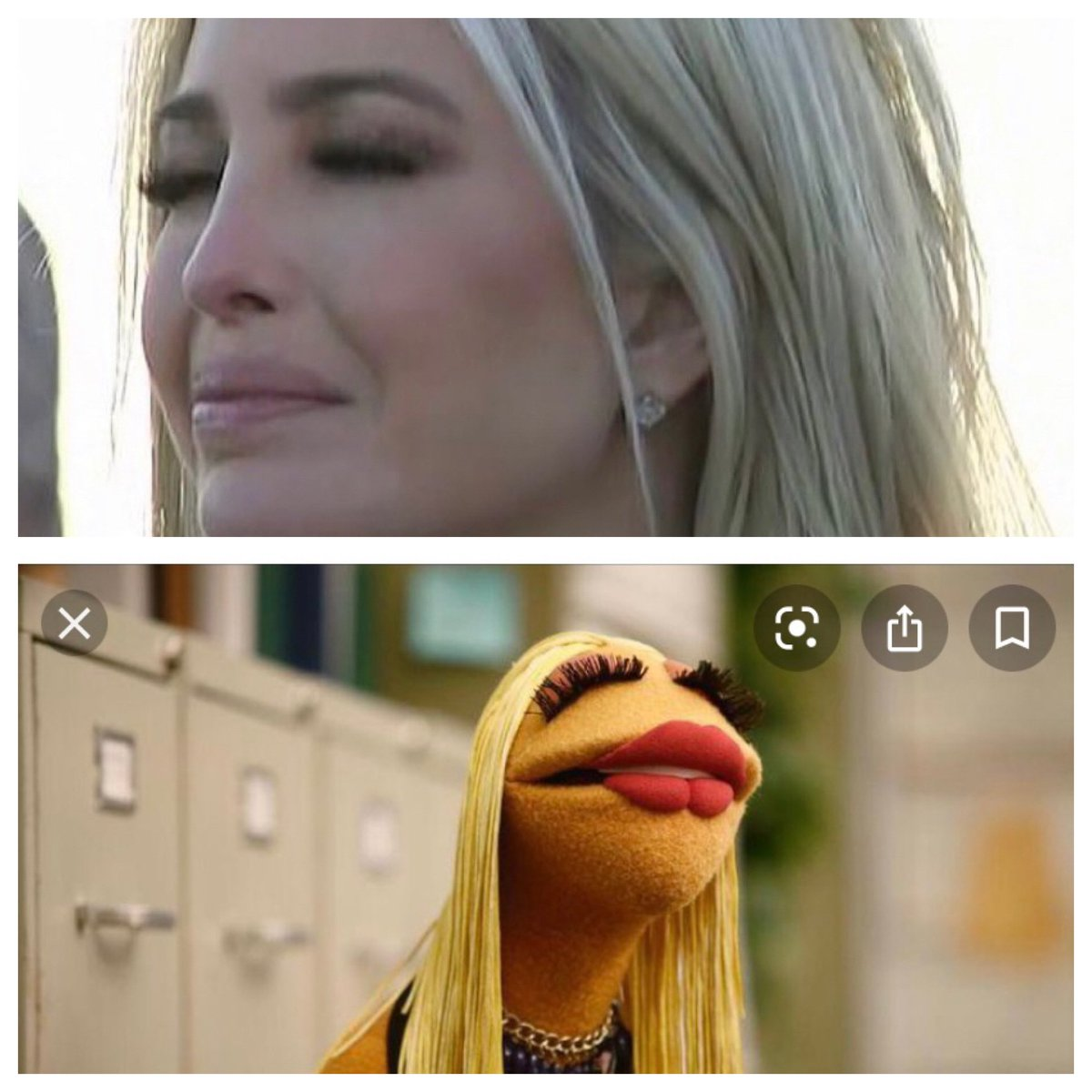 Is it just me or does @IvankaTrump look a lot like this muppet? #IvankaForPrison