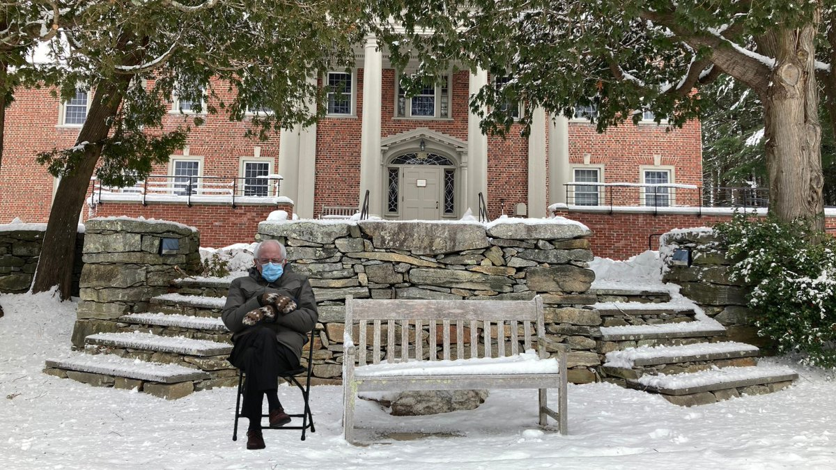 Replying to @InsMedSoc: In search of some peace and quiet after Inauguration Day... #berniesmittens