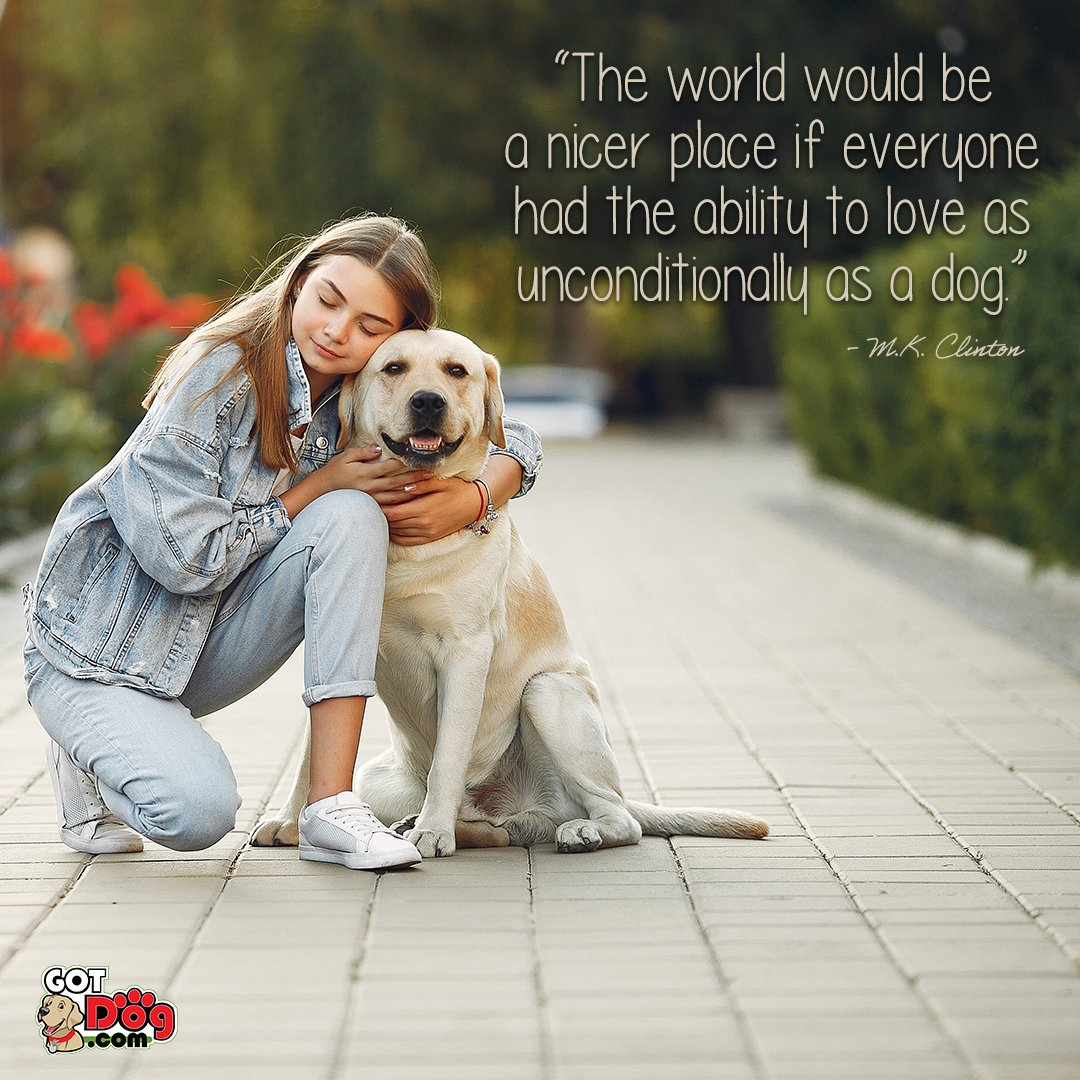 We could all use a little more love!  #dogoftheday #doglover #ilovemydog #petstagram #pets #puppylove #puppies #pup #instapet #doggy #doglife #adorable #doglovers #bestwoof #lovedogs #animals #weeklyfluff #petcologne #petfragrances #fragrances