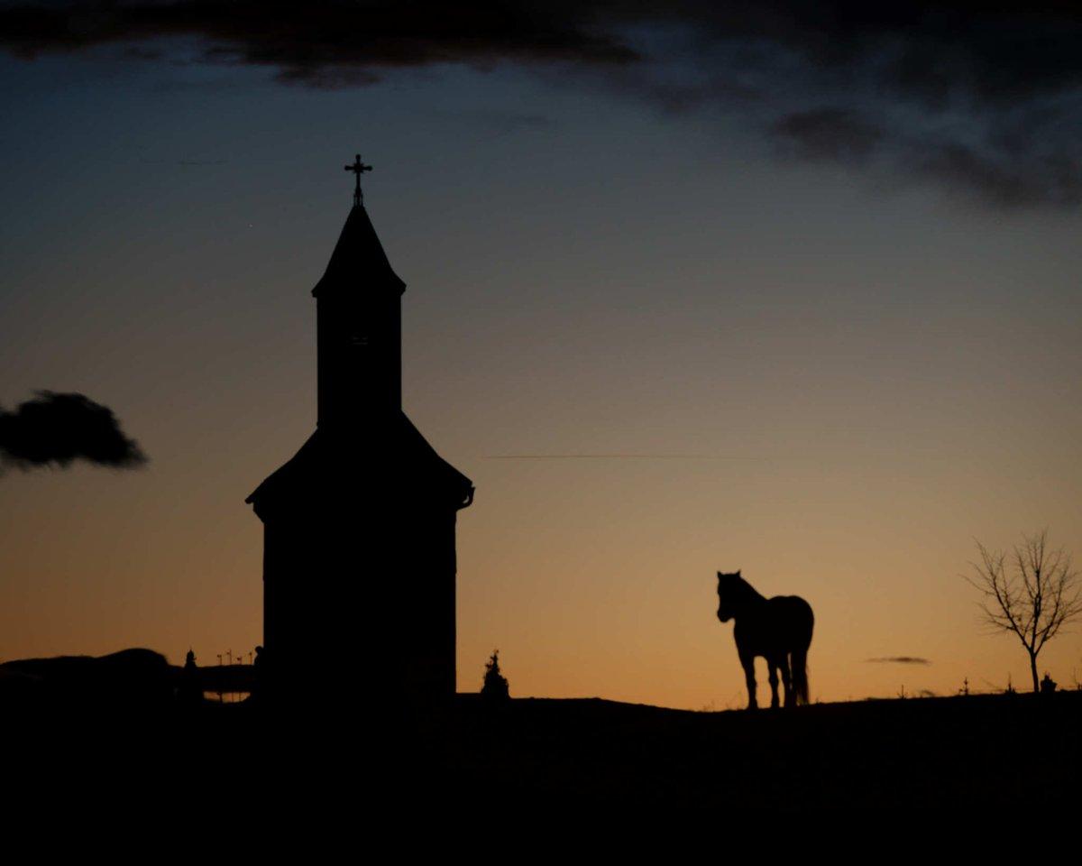 Good night  #photo #photographers #naturelovers #NaturePhotography #landscapephotography #horse #sunsetphotography