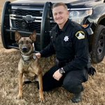 Image for the Tweet beginning: A #Hero and his K9
