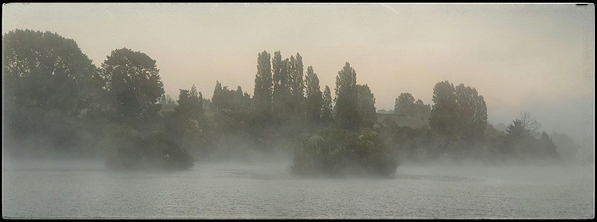 Clearly  On the way to work, a sightly experience of silence in the mists  #Waikato (C) #hottriggeredkiwi