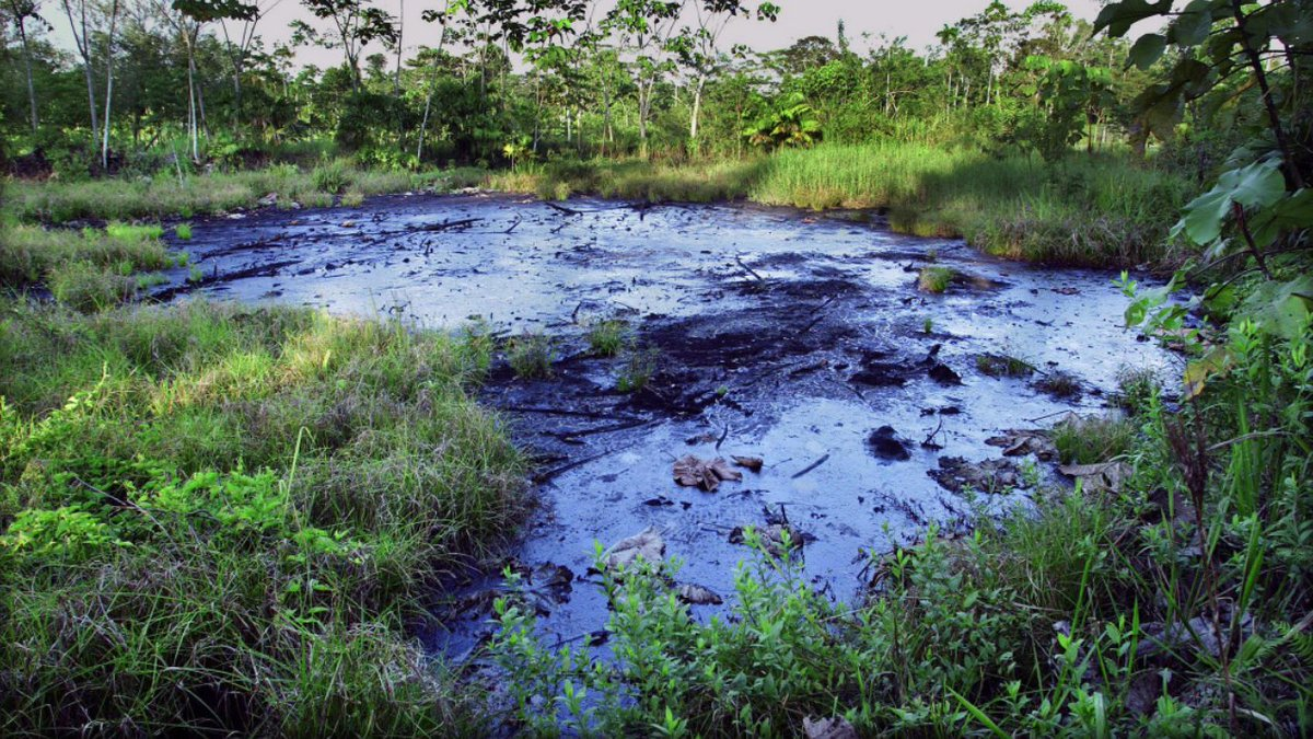 This is a single Chevron waste pit in the Amazon. Probably has 10,000 gallons of oil toxins seeping into waterways that Indigenous peoples use to drink, bathe and fish.  Multiply this pit by 1,000. That's @Chevron's legacy in Ecuador.