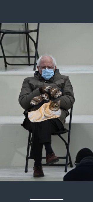 I copied this picture of Bernie from Twitter last night and didn't notice the 🐱 in Bernies lap. I'm dying
