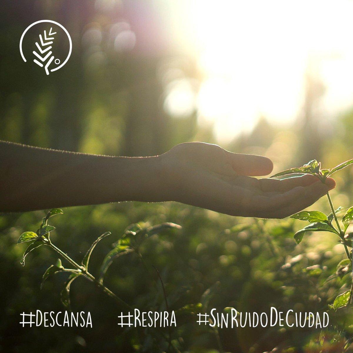 #baiguate #jarabacoa #BuenosDias #cafe #DC #respira #pausa #SinTapones  #SinRuidoDeCiudad #airepuro #EnLaNaturaleza #EnFamilia #viajar #EnGrupo