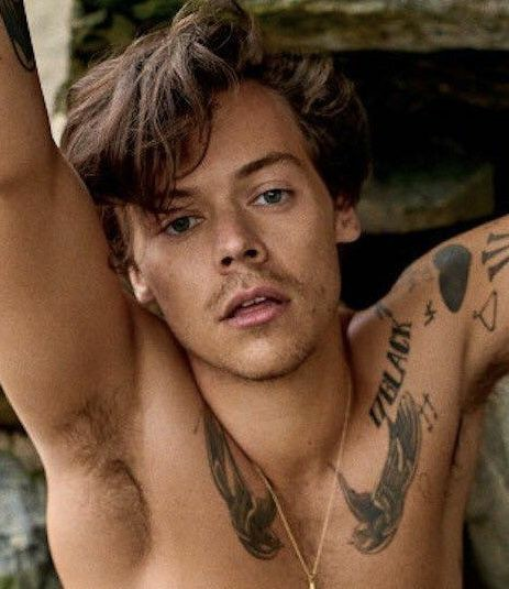 çin aşısı olan harry styles'in son hali🤧 https://t.co/oubdcFZB4d