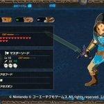 Image for the Tweet beginning: クリアしたっす #ゼルダ無双 #ゼルダの伝説 #Zelda #NintendoSwitch