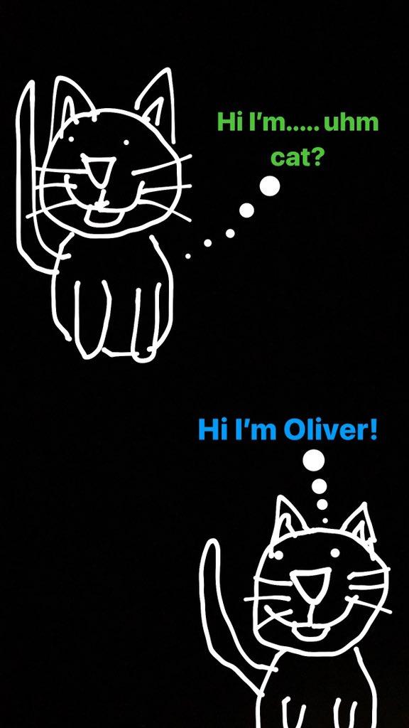 @CashApp @CashApp #cashapptrivia @AustinOnTwitter fav part was your cat without a name lol 🥴😅 $Danhusky93