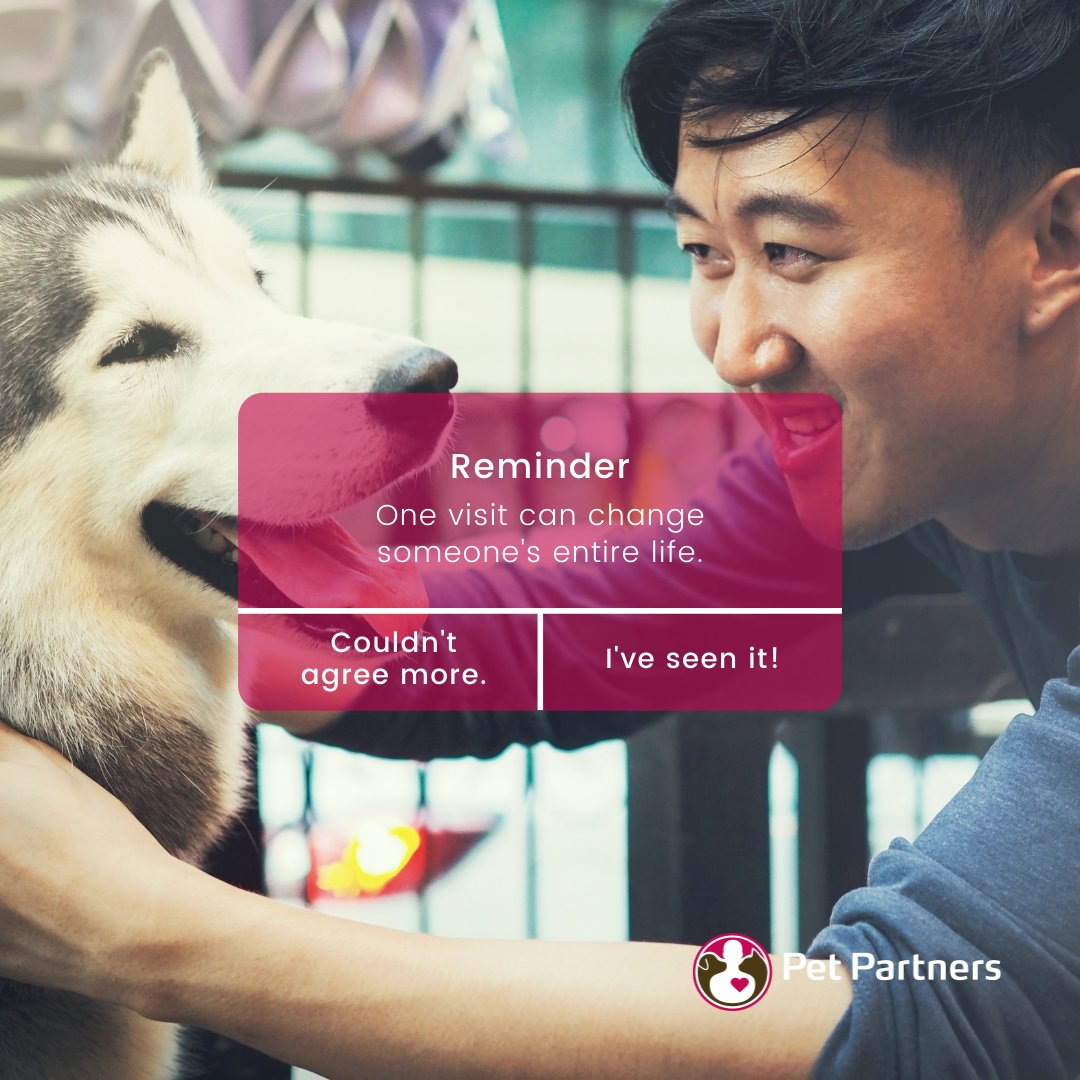 Pet Partners (@pet_partners)  Twitter