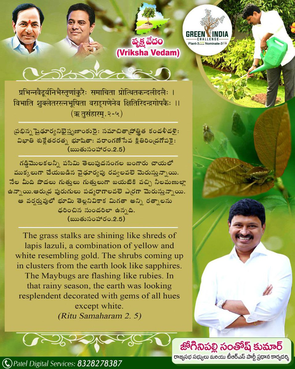The way the Mother Nature welcomes the seasons has been wonderfully scripted in our Vedas & Puranas. As mentioned in #RituSamhaaram, rainy season has been described as the Mother Earth was looking spectacular decorated with colourful gems.  #VrikshaVedam 📖 #GreenIndiaChallenge🌱