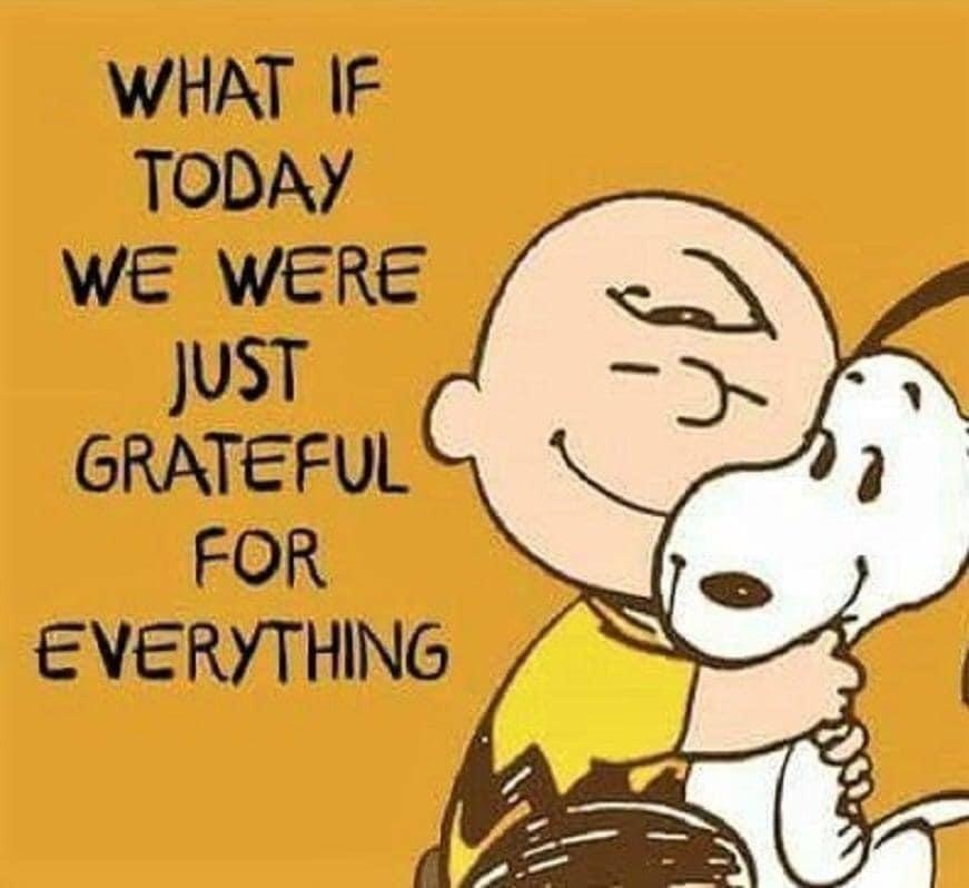 #gratitude #meditation #yoga