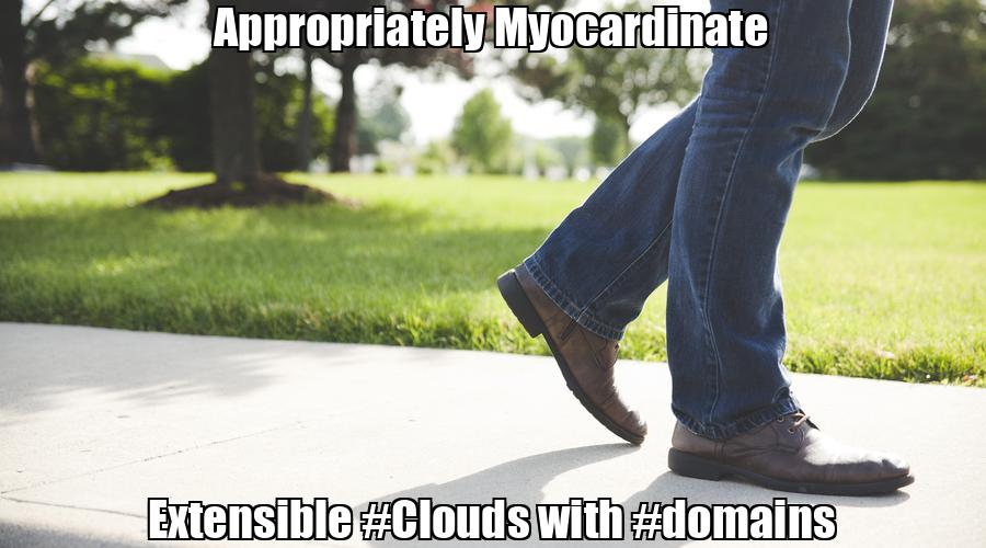 Appropriately Myocardinate Extensible #Clouds with #domains  💰 Buy #domain #covid #lockdown