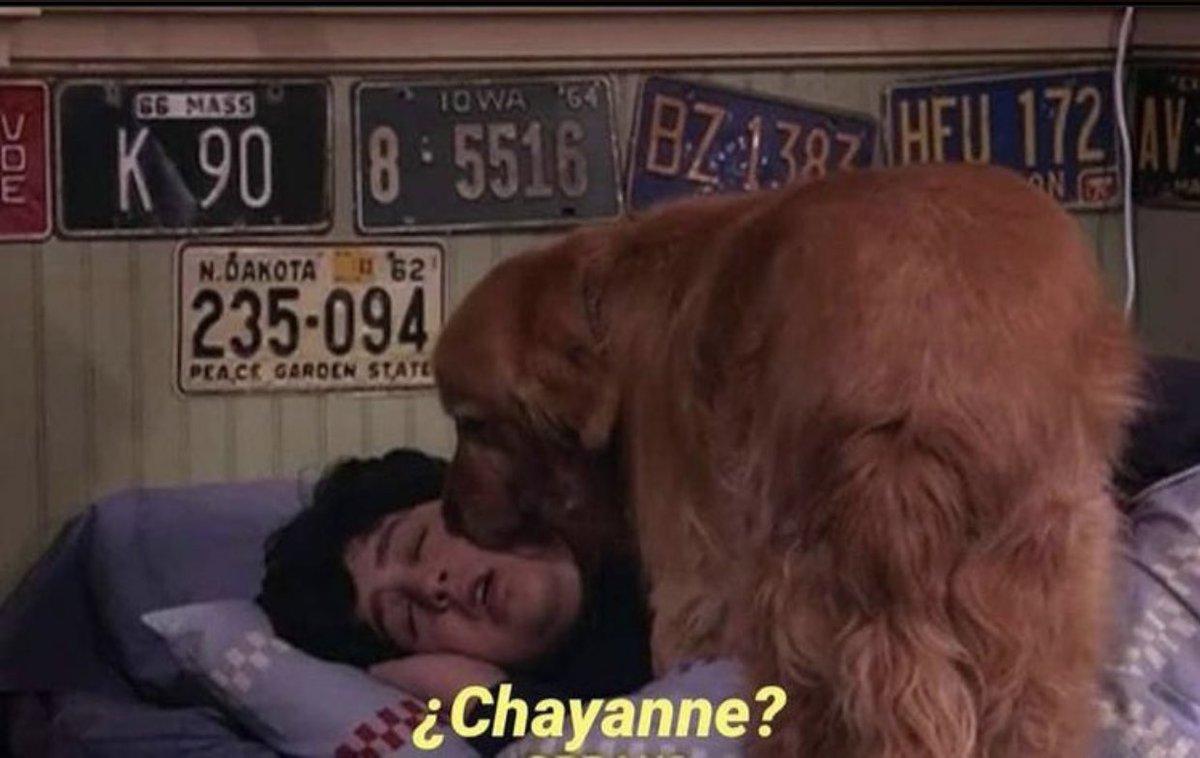 Pasa seguido  #Chayanne