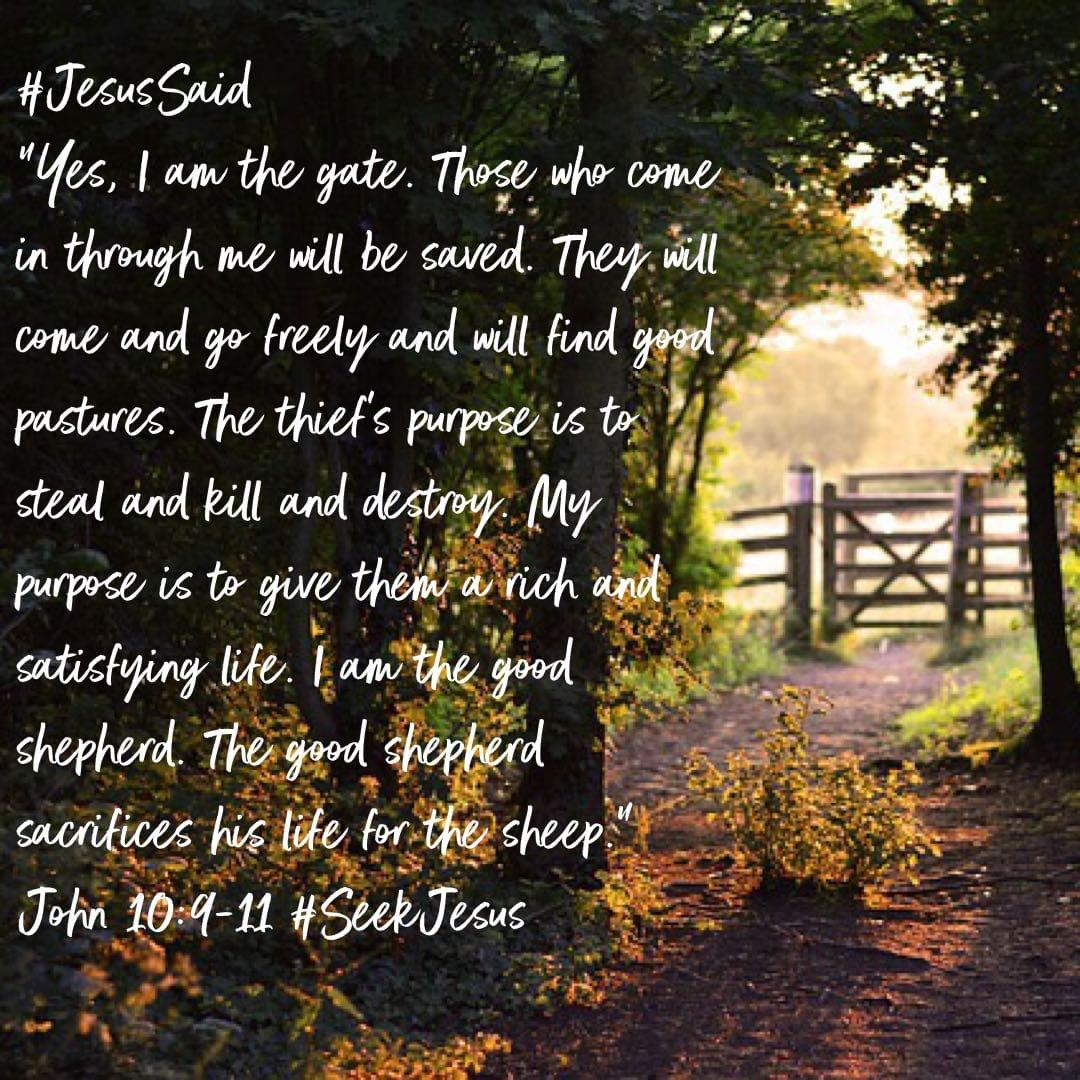 #Truth: #Jesus is the Gate. We are Saved Through #Christ Alone #GospelTruth #SeekTheTruth  #TrustGod🛐#StudyTheBible📖#FridayFeeling😇#FridayThoughts🤔#FridayMood😇#FridayVibes😃#Salvation😇#ReadTheBible📖#CatholicTwitter #GoodNews😇 #SeekJesus✝️ #Faith