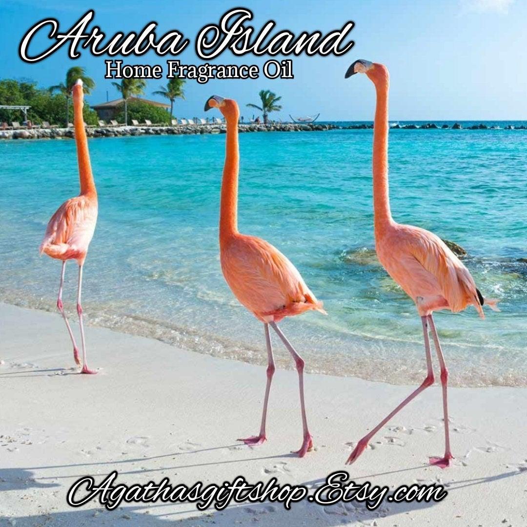 Aruba Island Home Fragrance Diffuser Warmer Aromatherapy Burning Oil  #HerbalRemedies #HomeFragranceOil #GiftShopSale #PerfumeBodyOils #BlackFriday #CyberMonday #AromatherapyOil #Etsy #Incense #Wedding #FragranceOils