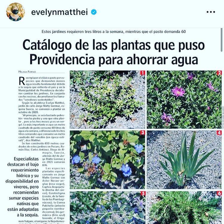 Políticas Públicas con sentido, me encanta de la Alcaldesa @evelynmatthei que tiene una mirada acorde a los tiempos modernos, responsables y #sustentables. Por eso, la @muniprovi hace lo suyo, ahora tod@s debemos hacer lo nuestro.💚 Léelo en @lungram  #plaza 🌿 #lifestyle 🌱