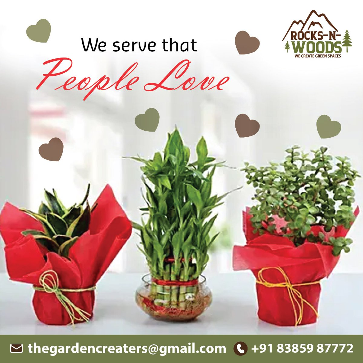 We serve that people love  Call- +91 8385987772 thegardencreators@gmail.com #gardener #gardening #garden #gardenlife #flowers #plants #nature #gardens #growyourown #mygarden #gardeninspiration #gardenersworld #vegetables #backyardgarden #gardenlovers #planting