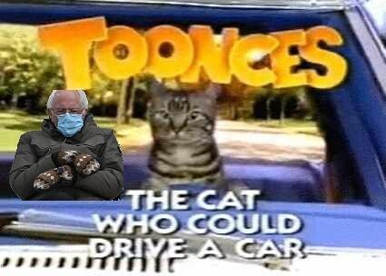 #toonces #BernieSanders  #Berniememes