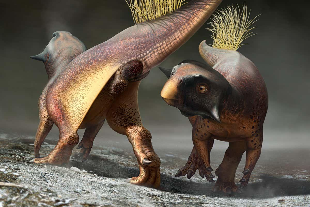 Stunning fossil suggests dinosaurs lured mates with smell and vision