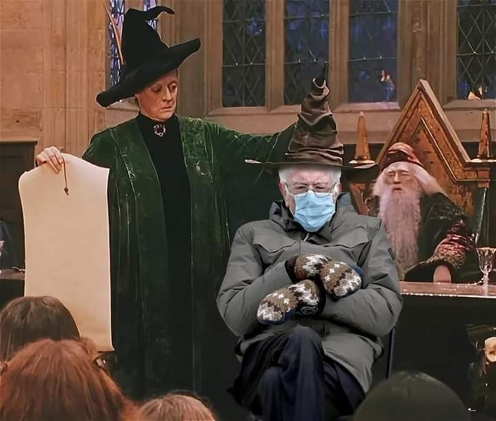 I am once again asking not to be placed in Slytherin House #BernieSanders #Berniememes