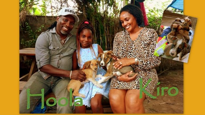 We still have to catch up with the adoptions from last year 😃  Here our siblings Kiro and Hoola,as well as Kahira and Haiti with their new loving families! Congratulations to all of you!   #adoptdontshop