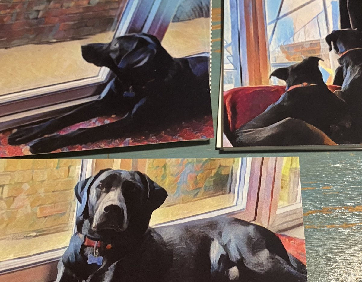 Sneak preview! The 2021 collection has arrived! I'm excited to share it with you as soon as I can! 😊#photographs #art #life #dogs #smallbiz #iSpy #postcards #greetingscards